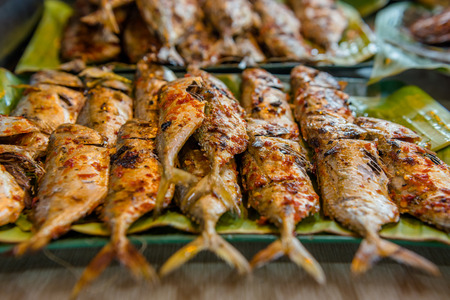 literally: Ikan bakar is an Indonesian or Malaysian dish of charcoal-grilled fish or other forms of seafood. Ikan bakar literally means burned fish in Malay and Indonesian.