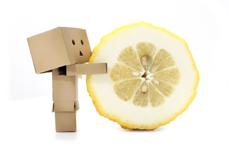 Cardboard characters holding sliced lemon