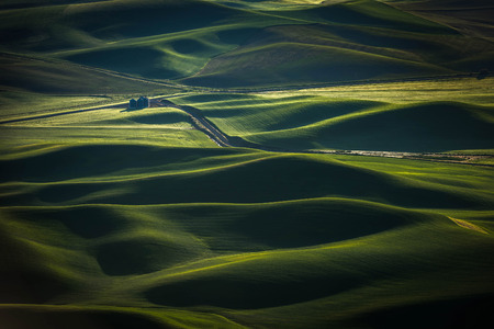 butte: Washington Palouse. The palouse area is a major agricultural area, primarily producing wheat and legumes. The picturesque loess hills of the the Palouse Prairie can be viewed from Steptoe Butte Park. Stock Photo