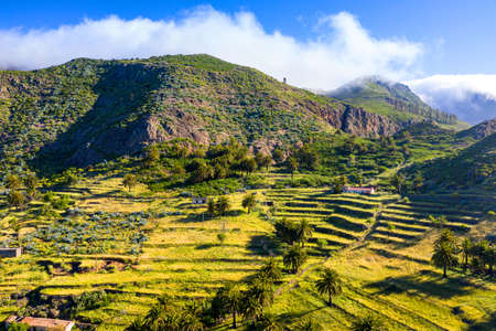 Terraced cultivation area in Vegaipala on La Gomera, Spain