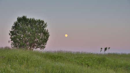 月亮。黎明。白夜。