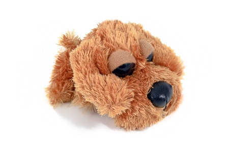 Fuzzy brown puppy toy, isolated on white background photo