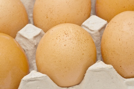 Brown eggs in a carton package closeup photo