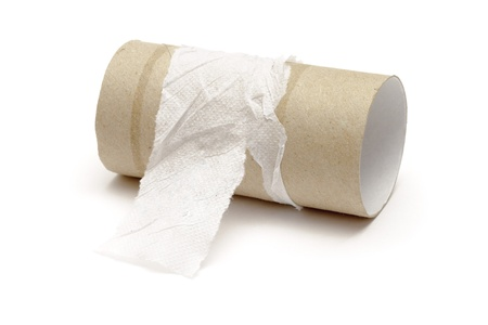 toilet roll: Empty toilet paper roll  on white background
