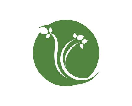 Tree leaf vector logo design, eco-friendly concept Ilustrace