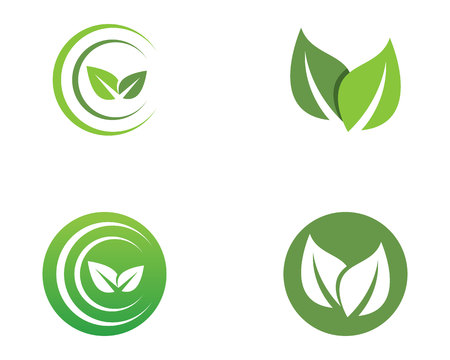 Leaf green nature logo and symbol template Vector. Illustration