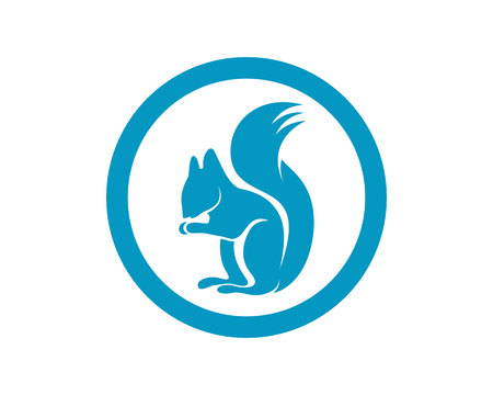 Squirrel animals logo and symbols template icons app