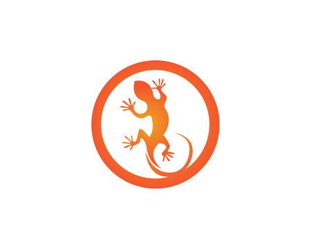 Lizard animals logo and symbols vector temlate Illustration