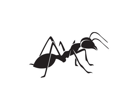 Ant icon template vector illustration Vettoriali