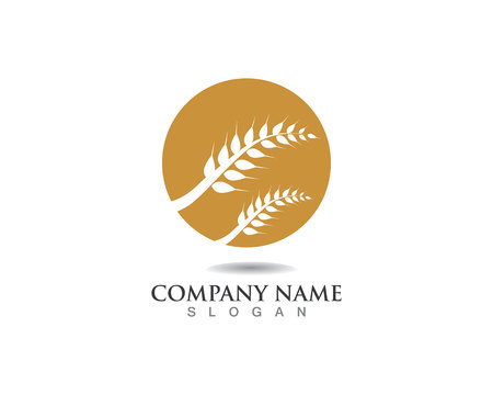 Agriculture wheat Logo Template,healthy life logo vector icon design Çizim