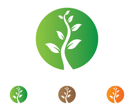 tree go green nature logo and symbol template Vector