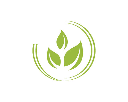 Agriculture business logo unique green vector image