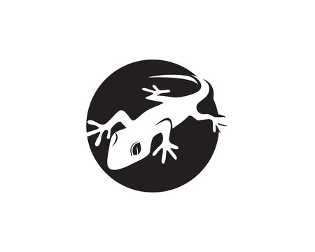 Lizard Chameleon Gecko Silhouette black Vectores