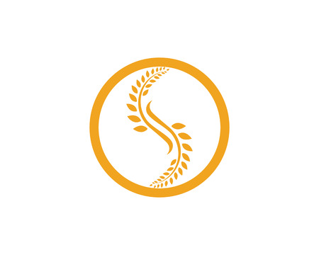 Agriculture wheat Template,healthy life logo vector icon design