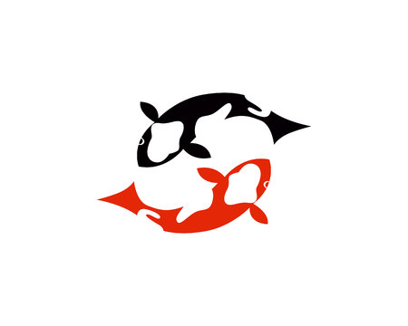 Koi fish logo and symbols vector template 向量圖像
