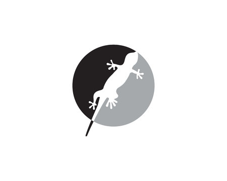 Lizard Chameleon Gecko Silhouette black vector Illustration
