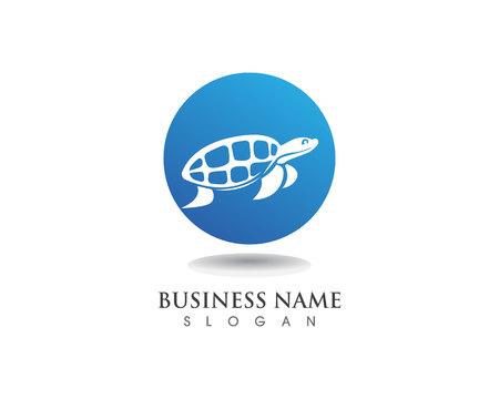 turtle animal cartoon icon and symbols Illustration