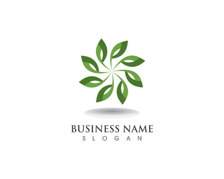 floral patterns logo and symbols on a white background Logo