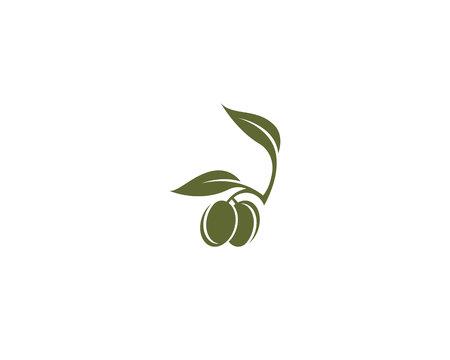 olive logo template 向量圖像