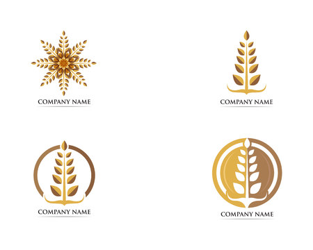 Wheat food logo vector