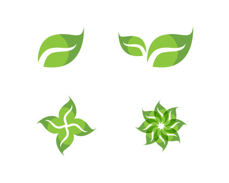 Leaf green leaves icon 스톡 콘텐츠 - 111166126