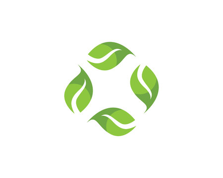Leaf green leaves icon Vectores