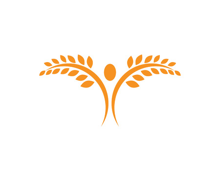 Agriculture wheat Template,healthy life vector icon design