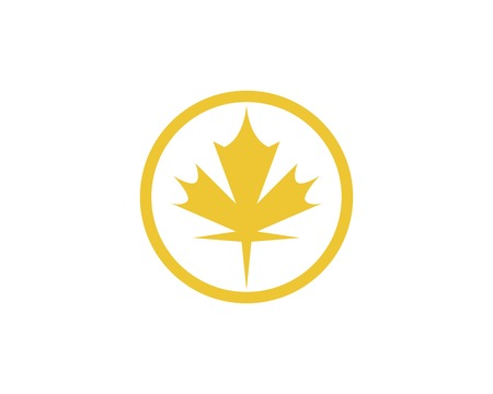 Maple leaf vector illustration design template Banco de Imagens - 120252808