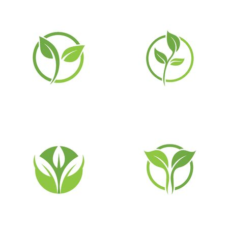 Leaf Logo vector Template