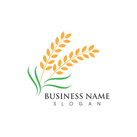 Agriculture wheat and symbol vector