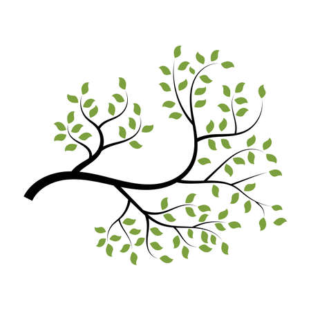 tree branch vector ilustration design template Stock Illustratie