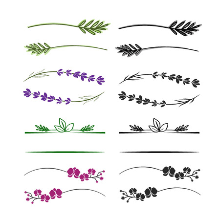 Twig and branch dividers for text or logo. Floral design elements.