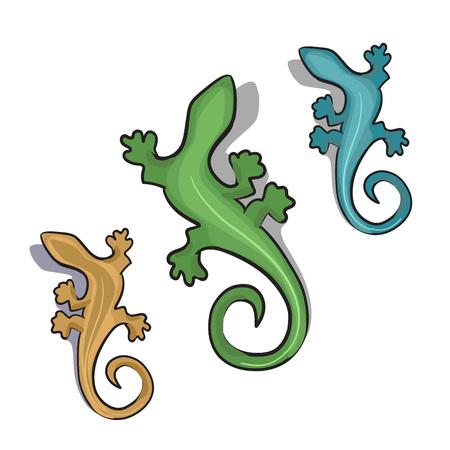 vertebrate: Cartoon vector illustration of geckos or lizard.