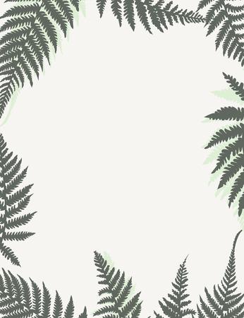 Cornice vettoriale con foglie di felce. Modello floreale per il tuo design per depliant, invito o carta con posto per il testo.