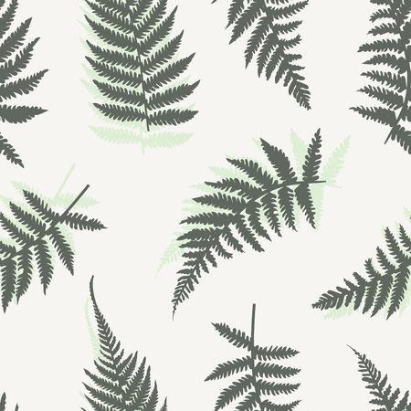 Seamless vector background with different fern leaves.  イラスト・ベクター素材