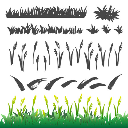 Hand drawn grass elements collection. Brush drawing grass and leaves isolated on the white background. Sketch style set.