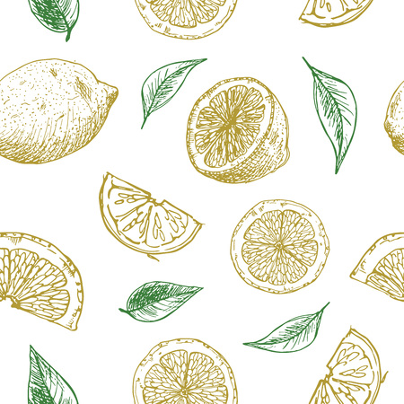 Seamless background with lemon pieces. Pattern with sketch of lemons on the white.  イラスト・ベクター素材