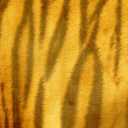 tiger skin: fabric stylized tiger skin Stock Photo