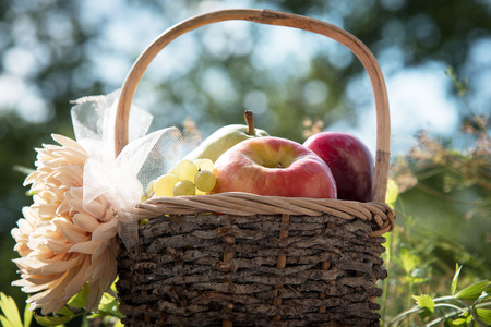 A basket of fresh apples, pears and plums on the grass. Sunset