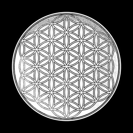 Blume des Lebens. Vektorgrafik