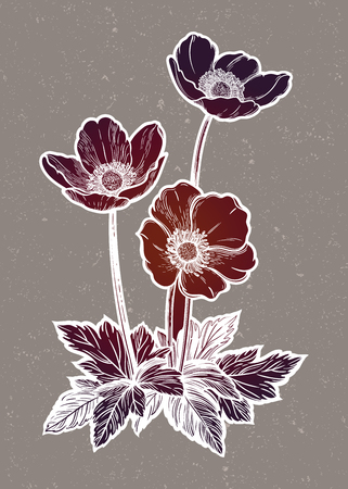 Beautiful flowers. Isolated vintage style vector illustration. 写真素材 - 126096271
