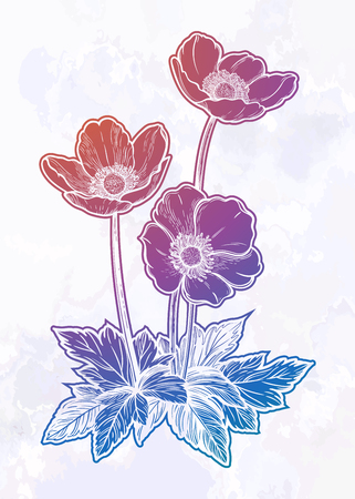 Beautiful flowers. Isolated vintage style vector illustration. 写真素材 - 125229827