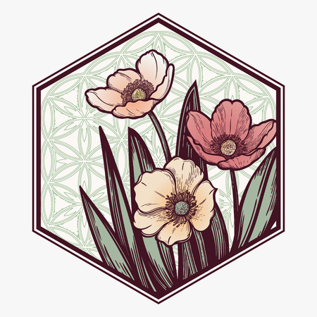 Hand drawn illustration Tulips flower. Idea for visit card, typography vector,print for t-shirt. 写真素材 - 124851047