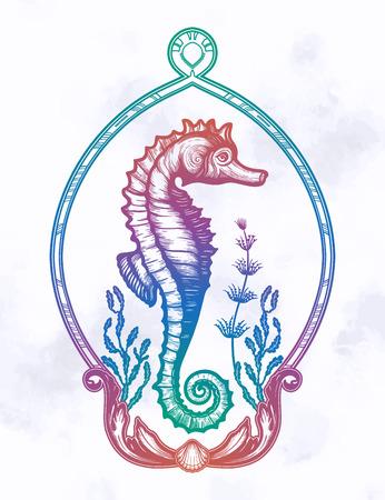 Hand drawn seahorse with sea plants in elegant frame.Vintage vector illustration. 写真素材 - 124486625