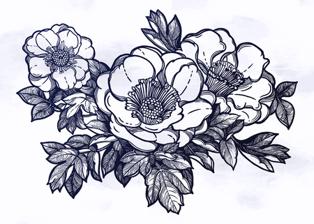 Flowers isolated vector illustration. Template card invitation banner with exotic roses or peony. Botany sketch in linear style. Tattoo design element. 写真素材 - 124094254
