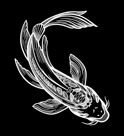 Hand drawn ethnic fish Koi carp - symbol of harmony, wisdom. Vector illustration isolated. Spiritual art for tattoo. Beautifully detailed, serene.