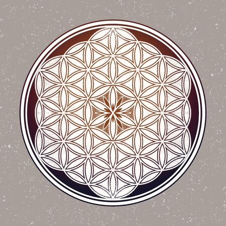 Flower of Life - intersecting circles forming.