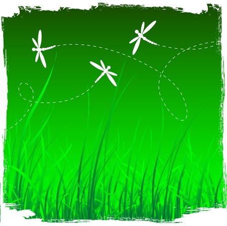 Dragonflies and grass background. vector illustration in grunge style