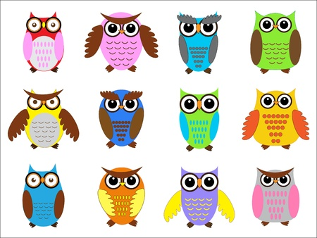 Set color owls. Vector illustration Vector