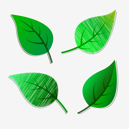 Green leaves stickers Vector